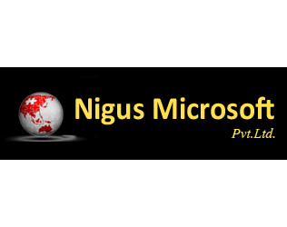 Nigus Microsoft recruitment for Accounting Assistant